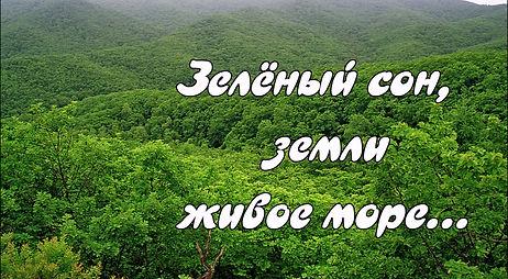 """Прогулка по Дальневосточной тайге с книгой С. Шлотгауэр """"Времена года"""""""