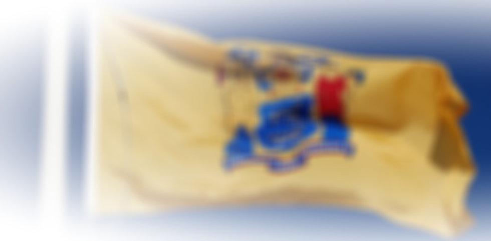 state-flag-2_edited.jpg