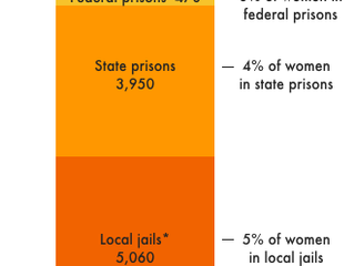 Prison Policy Initiative Release Findings on Neglect of Pregnant Women in Prisons