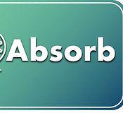 Absorb (Career Essentials).jpg