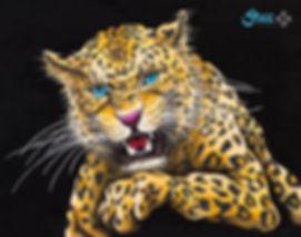 Tiger - Mai.jpg