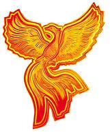 Phoenix_Logo_ohneHG_web_klein.jpg