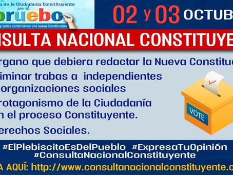 PARTICIPA EN LA CONSULTA NACIONAL CONSTITUYENTE