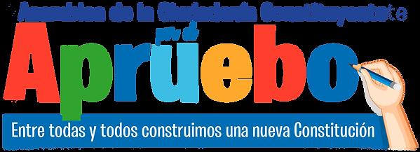 logo_ciudadanía_constituyente_(2).png