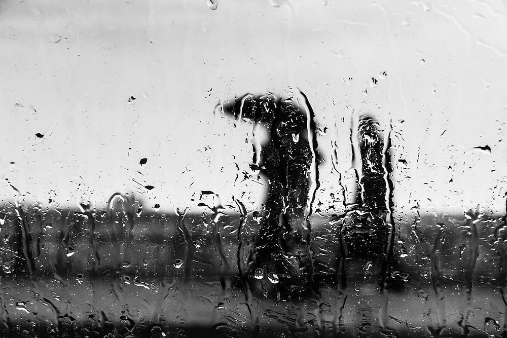 فوتوغرافيا | ياسمين حسين