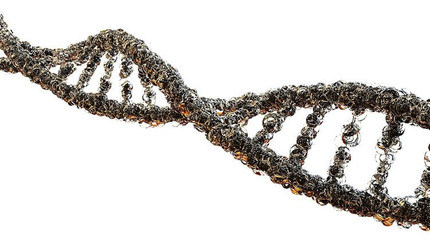 Genes that May Trigger Depression Identified