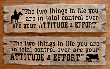 attitudeeffort.jpg