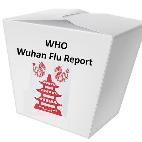 Wuhan Flu and You
