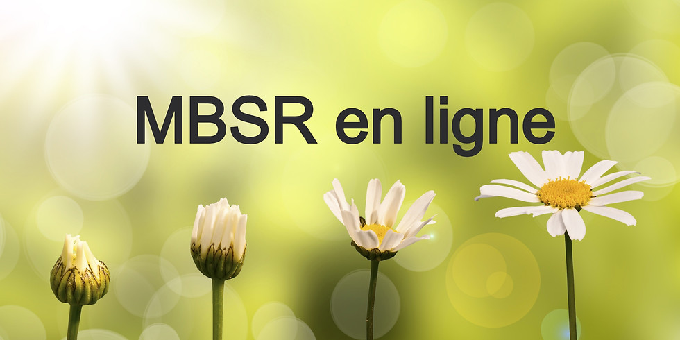 Programme MBSR - Réduction du stress basée sur la pleine conscience