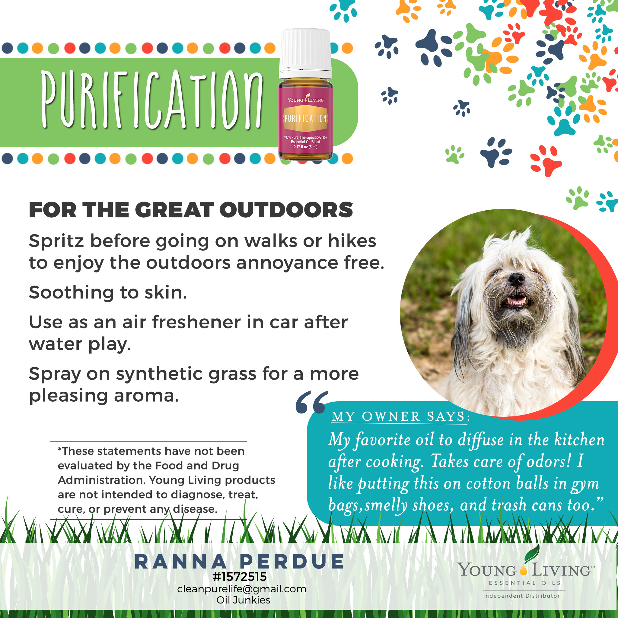 15-Dogs-Purification