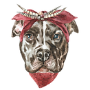 pittie_edited.png