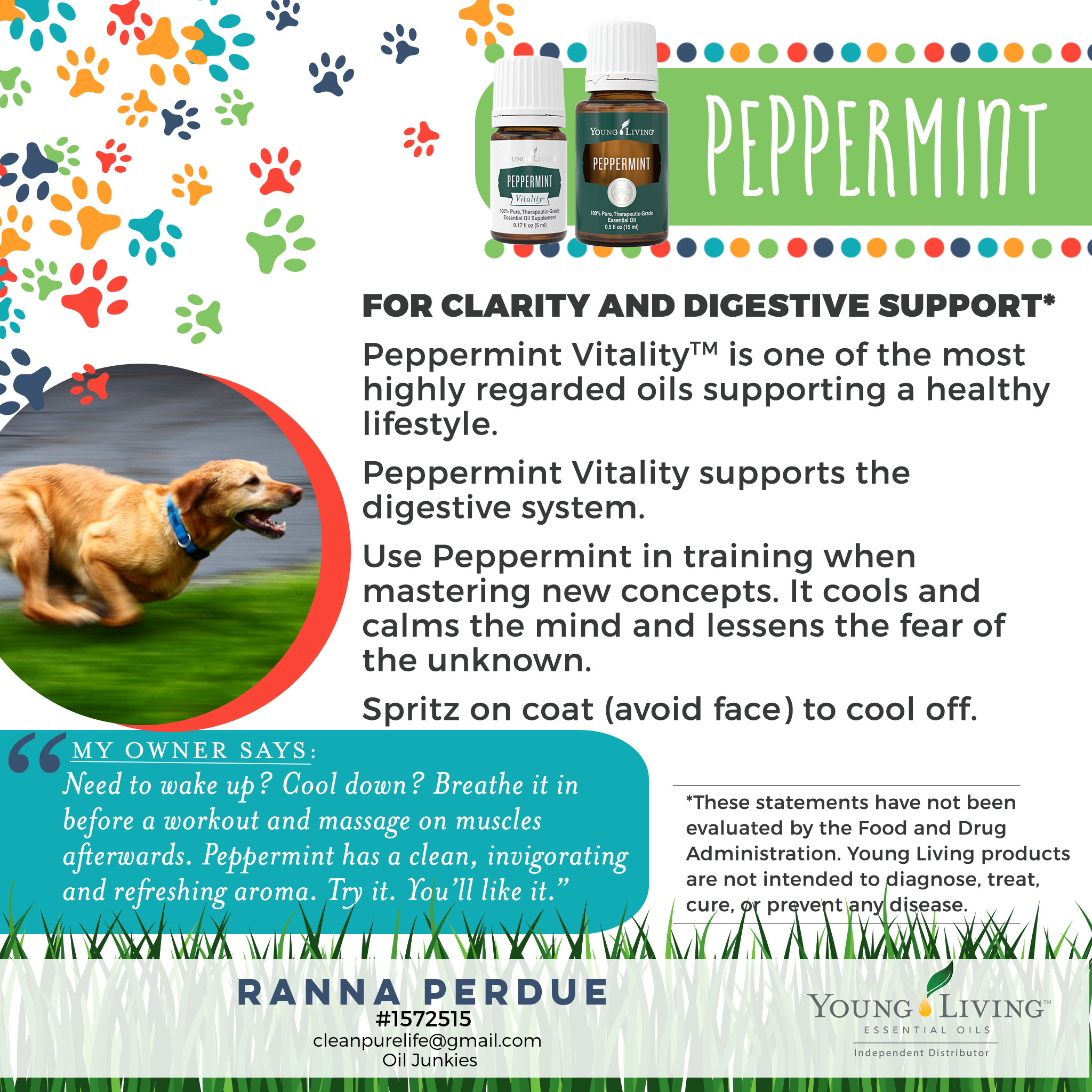 12-Dogs-Peppermint