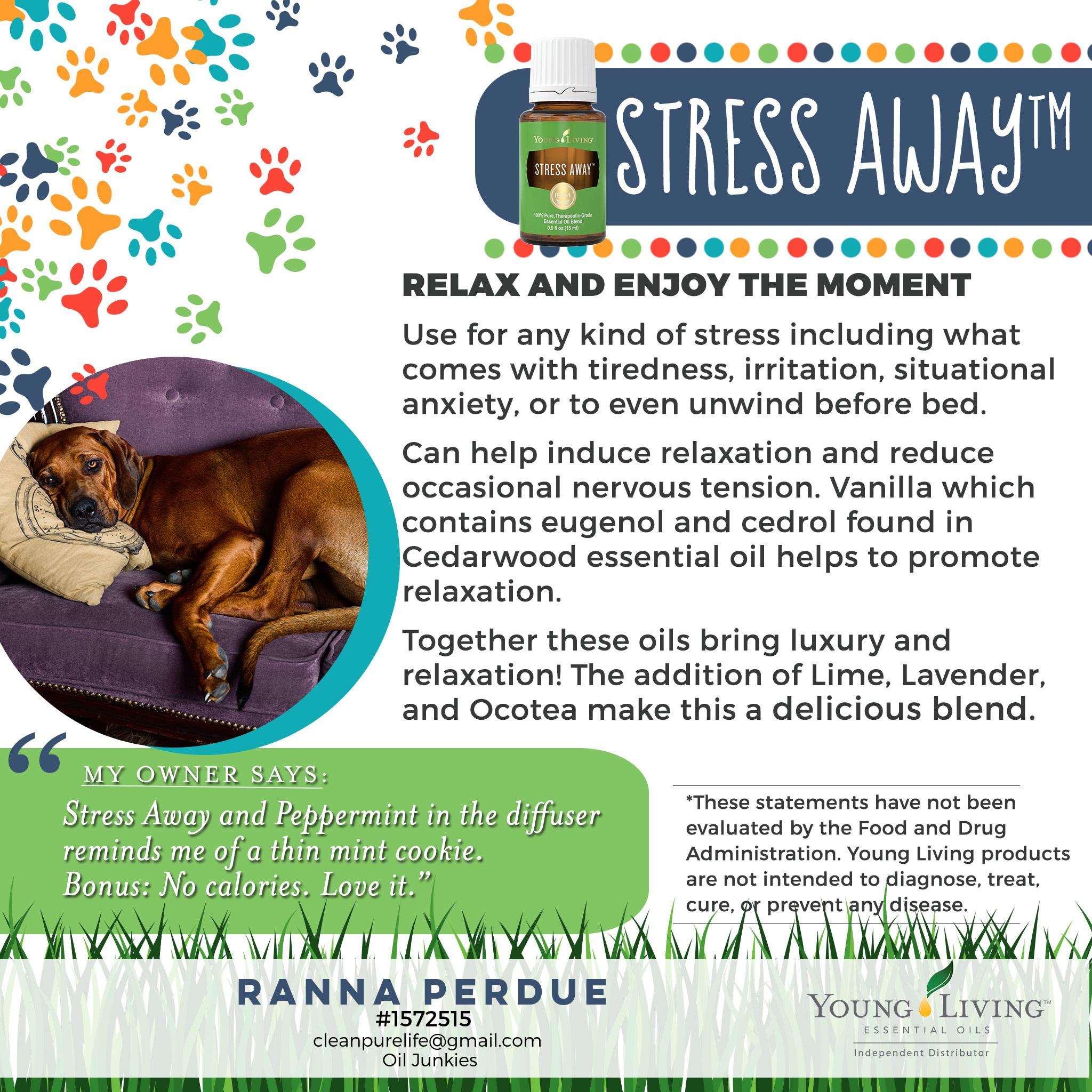 16-Dogs-Stress-Away