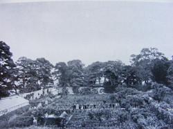 vinehouse-and-staff-in-garden