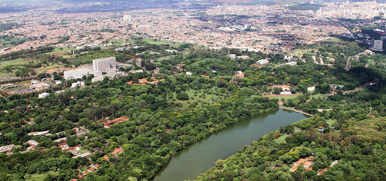USP - Ribeirão Preto