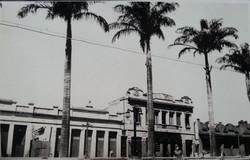 Palmeiras Imperiais (imagem histórica)