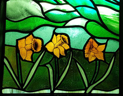 Close-up of handpainted daffodils