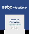 Logo CFE 2020.png