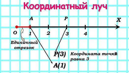 image-20.jpg