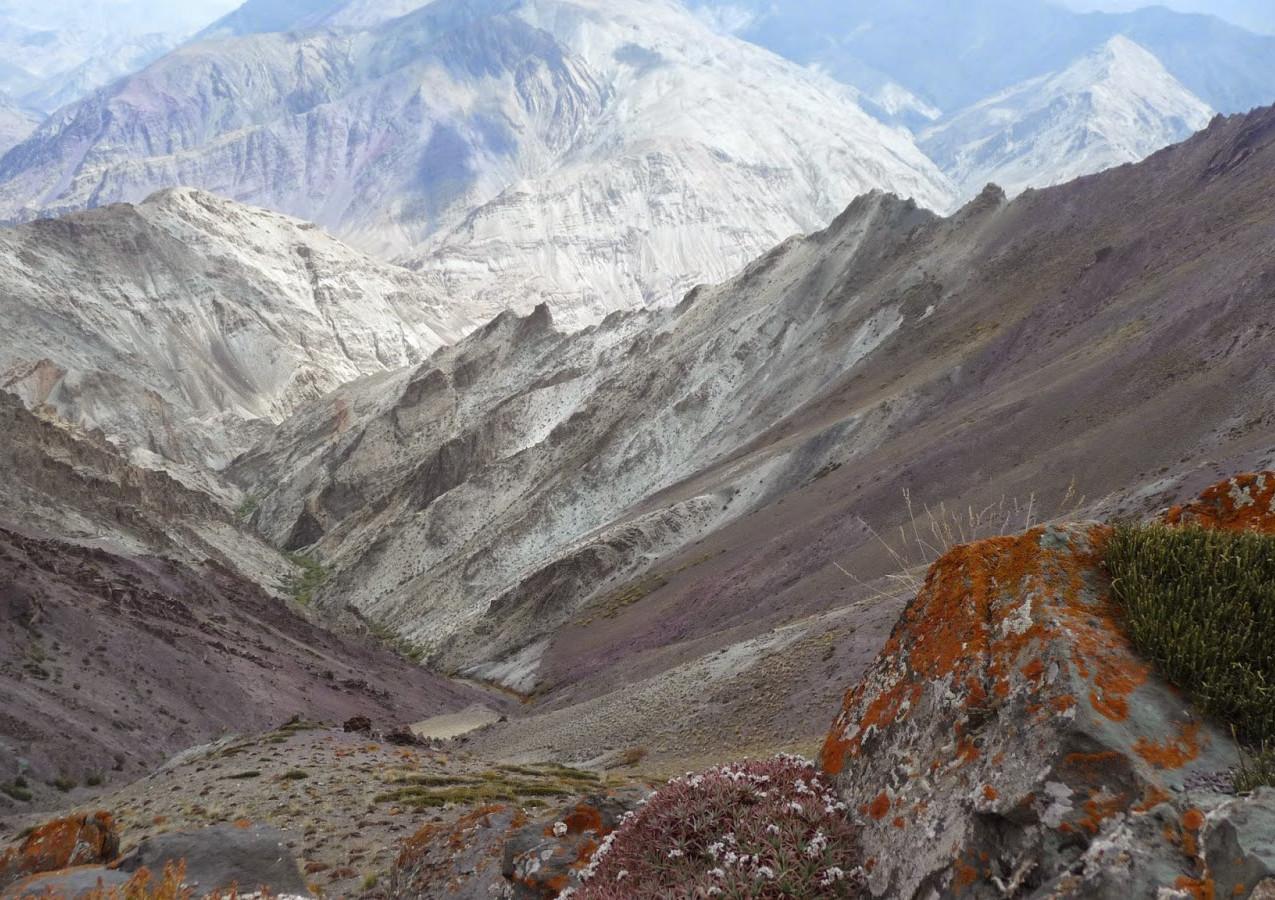 Treks-Ladakh-2015-P1110882