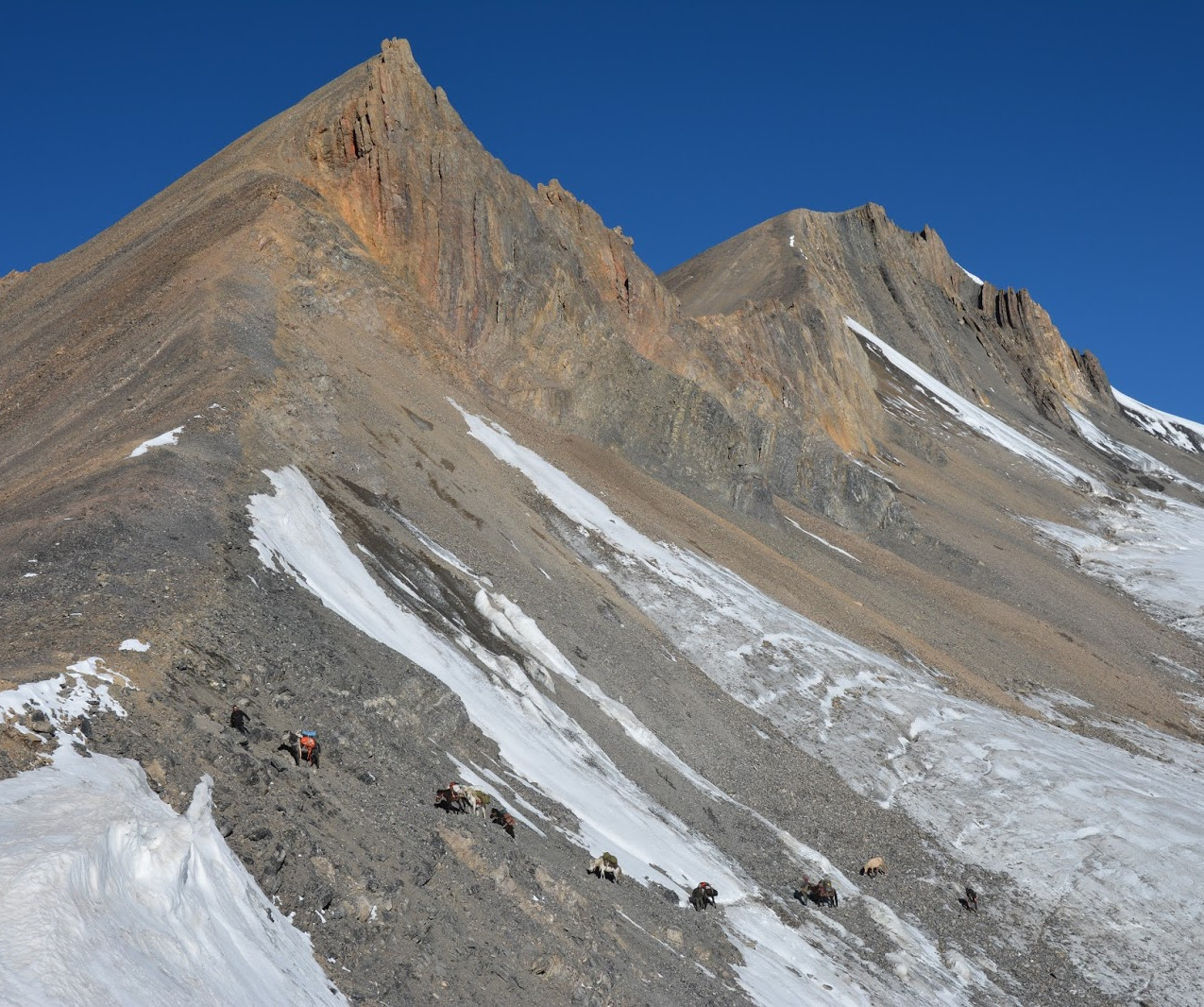 Ladakh-Spiti-2016-DSC_5889