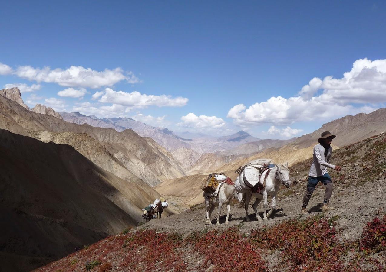 Treks-Ladakh-2015-P1110682