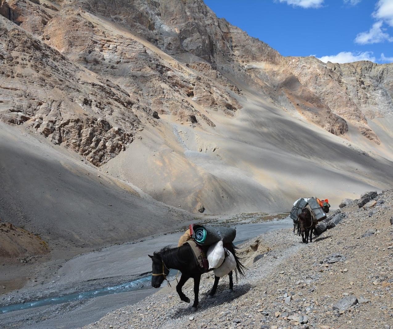Ladakh-Spiti-2016-DSC_5803