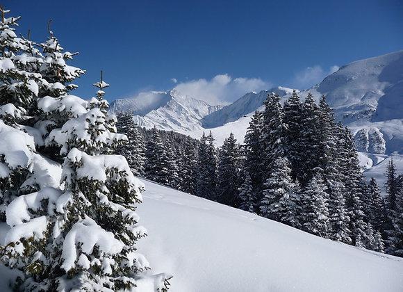 Week-end en raquettes au Pays du Mont-Blanc