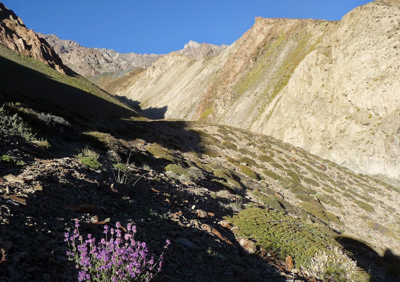 Treks-Ladakh-2015-P1110674