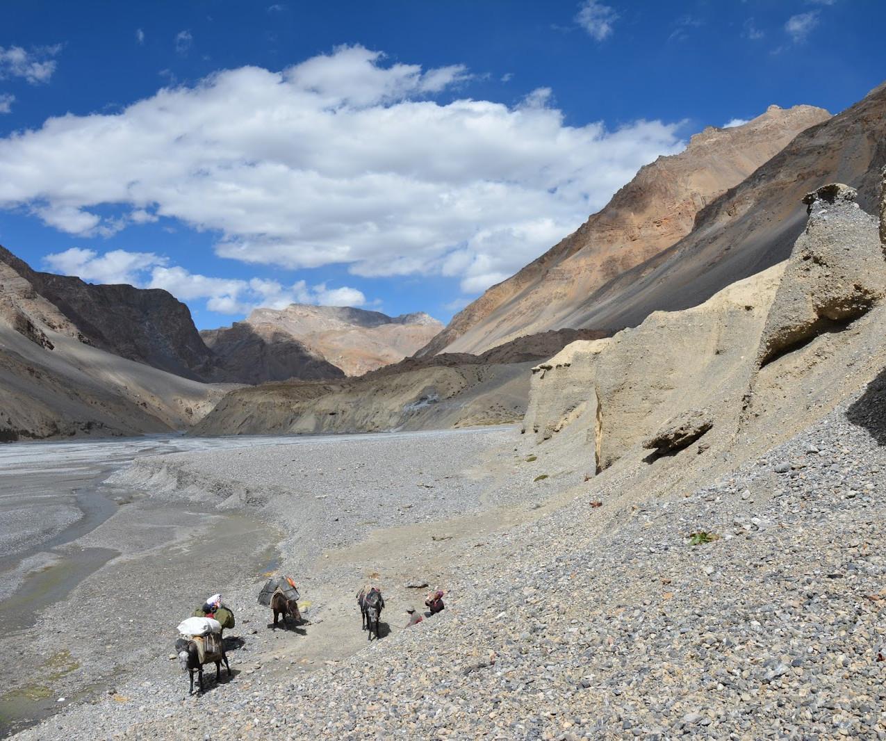 Ladakh-Spiti-2016-DSC_5817