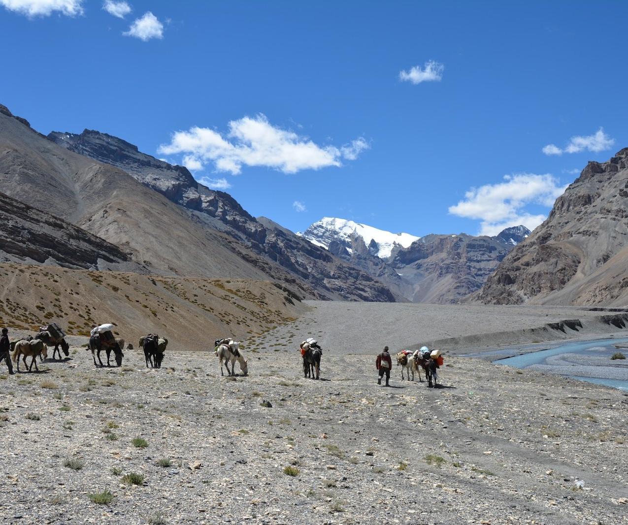 Ladakh-Spiti-2016-DSC_5762