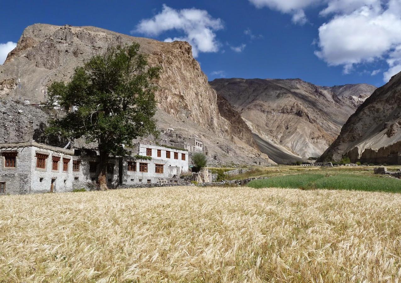 Treks-Ladakh-2015-P1120002