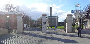 Professional Reflexology Training in Ireland