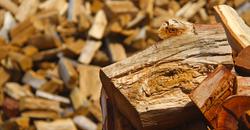 Seasoned Hotter Cleaner Firewood