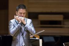 The Magical World of Harmonica