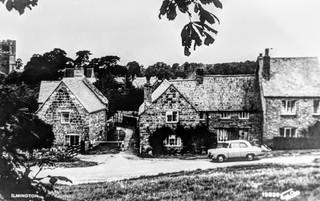 The Fish, Daisy cottage & Mizpah