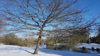 winter january .jpg