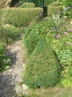 Brock topiary