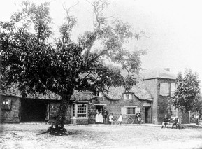 The Red Lion 1900s