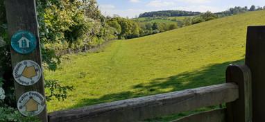 Walk to Campden Hill