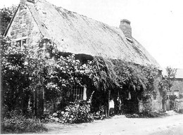 Two cottages in Back street, which have now been demolished, Ilmington. 1920