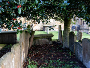 Holly berries and gravestones 1