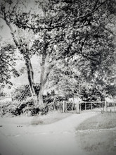 Treehouse at Foxcote Gate, Foxcote Hill