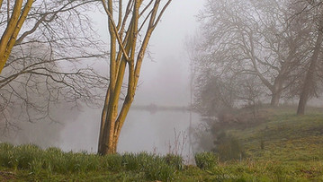A misty morning view of Ilmington Ponds