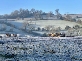 Ilmington in Winter 1