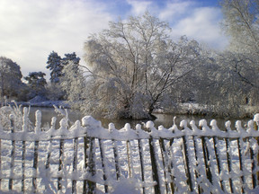 Winter. Berry Orchard Pond in Snow