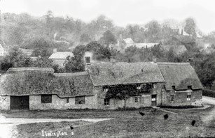 Peartree Cottage with thatch 2