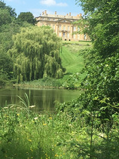 Foxcote House in June
