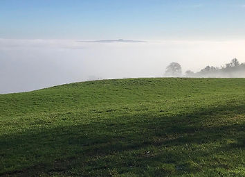 Brailes Hill through the January mist at