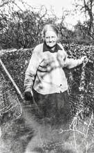 Emily Wilkins - David Wilkins' grandmother